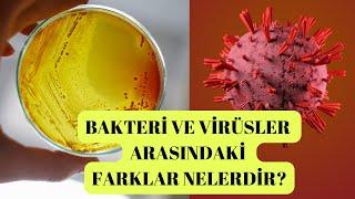 Bakteri ve virüsler arasındaki farklar nelerdir?