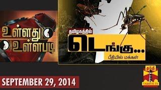 "Ullathu Ullapadi - ""Public Panic About Dengue In Tamil Nadu"" (29/9/14)"