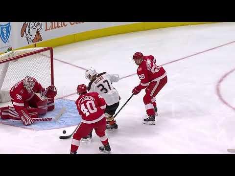 Video: Anaheim Ducks vs Detroit Red Wings | NHL | Feb-13-2018 | 20:30 EST
