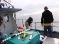 See us Catching Fish Off Kodiak Island - YouTube