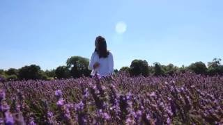 Nonton Mayfield Lavender 2016 Film Subtitle Indonesia Streaming Movie Download