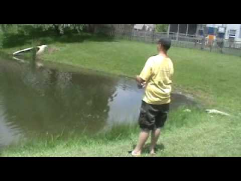 Fishing my backyard pond