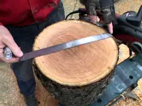 Lyle on Chainsaw Use for Woodturning.mp4