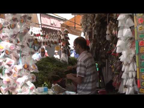النعناع المغربي .. معطر لكؤوس الشاي ومطفئ لظمأ الع