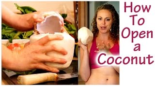 How to Open a Coconut, Fresh Coconut Water- Electrolytes! Weight Loss Drinks, Healthy Smoothies - YouTube