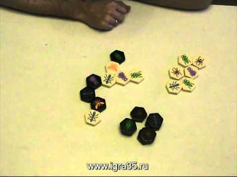 Видео - Улей дорожная (HIVE Pocket) + Комар + Божья коровка