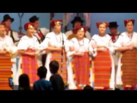 Tamburica koncert
