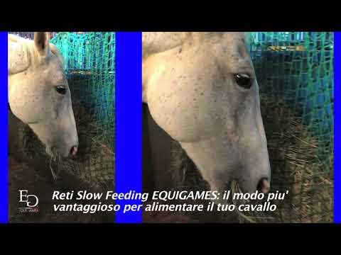 Reti Slow Feeding EQUIGAMES - Zero spreco di fieno