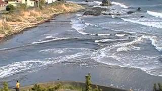 Download Video 東日本大震災 2011.3.11 MP3 3GP MP4