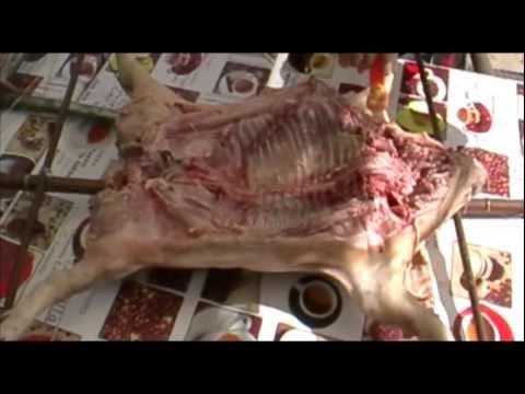 Cocina Campera-Lechon a la estaca HD