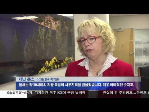 CA, 5년 가뭄 끝?...'강수량 최고'  3.02.17 KBS America News