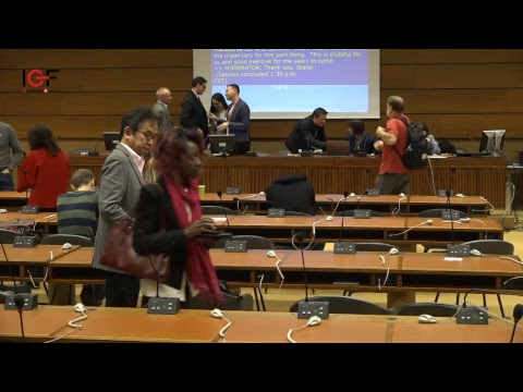 NRI Collaborative Session: Multilingual Internet: IDNs under the magnifying glass