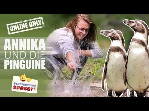 Annikazion im Pinguingehege