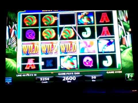 Crazy Chameleon Slot  Hit Respin
