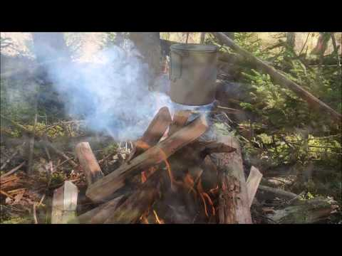 Solo Bushcraft Autumn Is Here