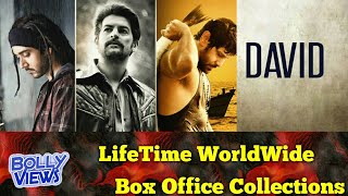DAVID 2013 Bollywood Movie LifeTime WorldWide Box Office Collections Verdict Hit Or Flop