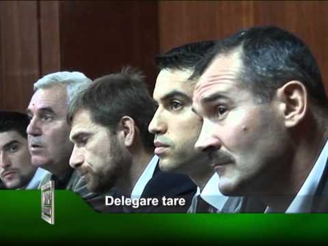 Delegare tare