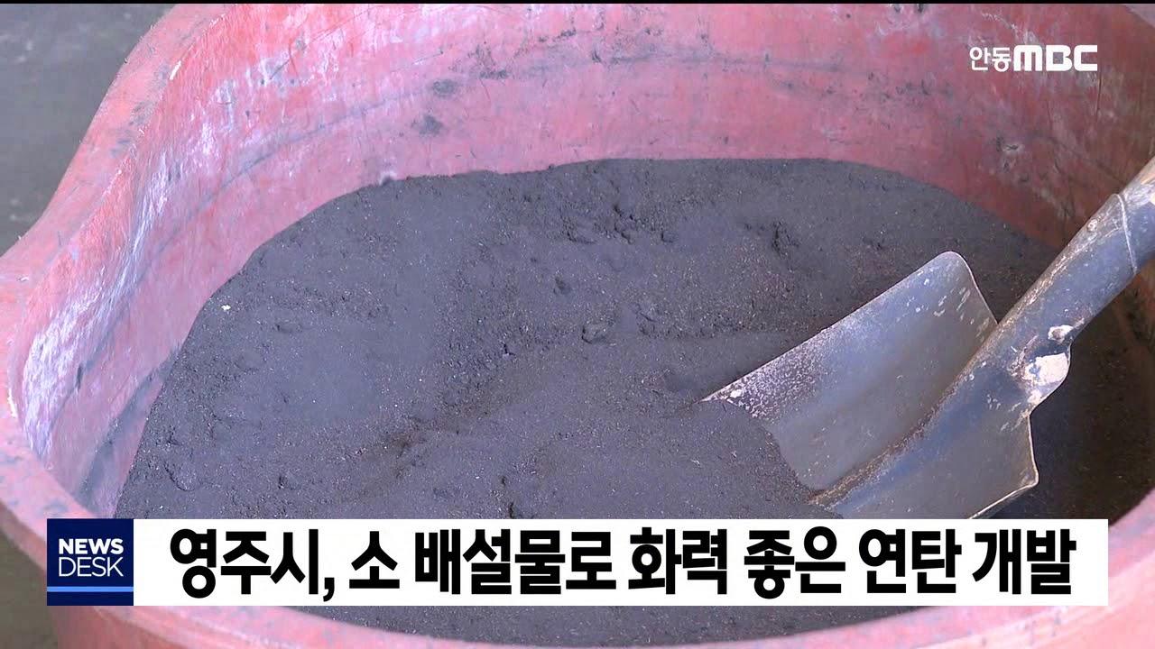 소 배설물로 화력좋은 연탄 개발