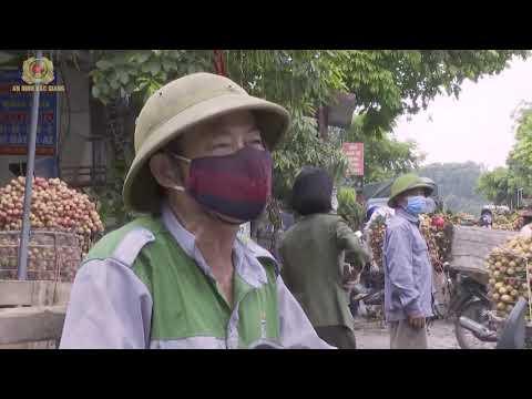 Công an huyện Tân Yên bảo đảm an toàn cho việc tiêu thụ vải thiều sớm