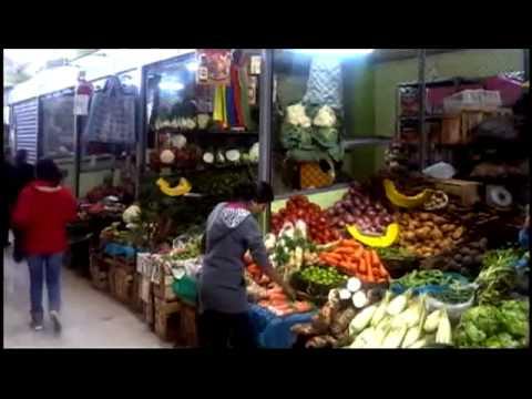 Los mercados de Lima  cap1
