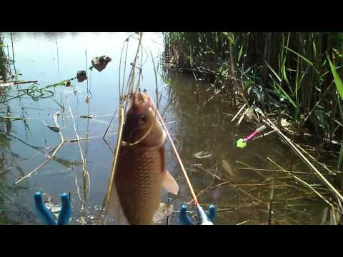 рыбалка на крупного карася на резинку