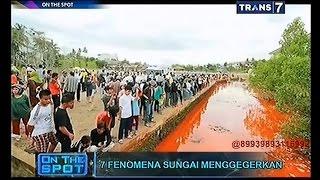 Video On The Spot - 7 Fenomena Sungai Menggegerkan MP3, 3GP, MP4, WEBM, AVI, FLV Oktober 2018