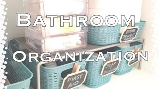 Bathroom Organization|Dollar Tree Organization|VD#1