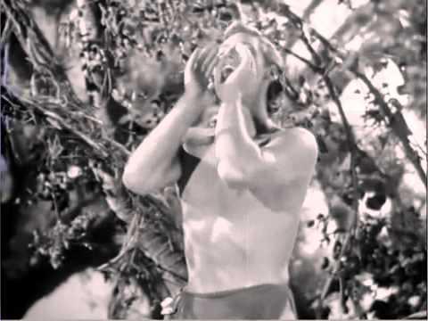 Video Tarzan Escapes 1936   2 Tarzan and Jane Waking in the Treehouse adlı videonun kopyası download in MP3, 3GP, MP4, WEBM, AVI, FLV January 2017
