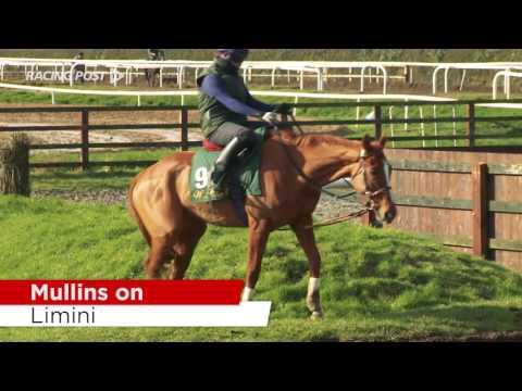 Cheltenham Stable Tour: Willie Mullins On His Hurdlers