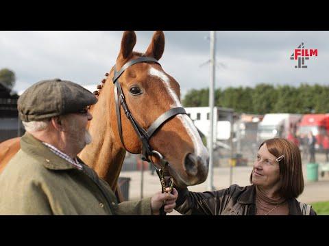 DVD of the Week: Dark Horse