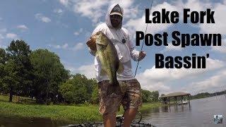 Video Lake Fork Post Spawn Bass Fishing: Good Times On The Goat Lake MP3, 3GP, MP4, WEBM, AVI, FLV Mei 2019