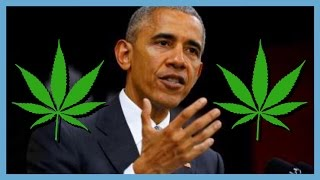 President Obama Says the End of Prohibition is Near?! | NewsNug recap | CoralReefer by Coral Reefer