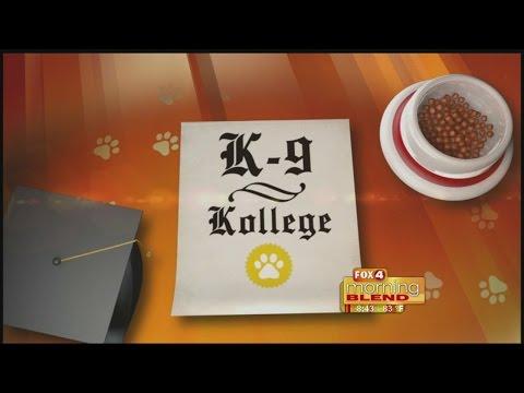 K-9 Kollege