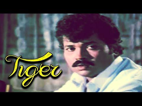 Video Tiger Kannada Full Movie   Action Drama   Tiger Prabhakar, Aarathi, Ramakrishna   Latest Upload 2016 download in MP3, 3GP, MP4, WEBM, AVI, FLV January 2017