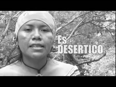 Arroyo Bruno - #ElAguaEsNuestra