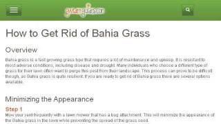 How-To Plant Bahiagrass In Florida