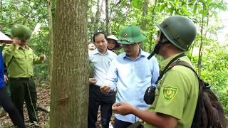 Bí thư Huyện ủy kiểm tra công tác quản lý, bảo vệ rừng tại khu bảo tồn Thiên nhiên Đồng Sơn Kỳ Thượng