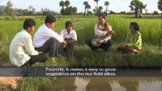 Khmer Culture - Learning Fish Culture..!