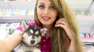 My Instagram : @Lanarose786 https://www.instagram.com/lanarose786/My Mum's Instagram: @mummy_mo_ https://www.instagram.com/mummy_mo_/?hl=enMy Brothers Instagram : @mo_vlogs_ https://www.instagram.com/mo_vlogs_/?hl=enMy Snapchat: lana.rose786My Brothers Snapchat: mohamedoo  My Twitter: https://twitter.com/lanarose786My Brothers Twitter: https://twitter.com/mo_vlogs_My Brothers Youtube Channel: https://www.youtube.com/channel/UC_hoQDD6zKcIqpIYLsFbBeAMy Facebook page: https://www.facebook.com/Lana-Rose-1680371262242746/Mo Vlogs Facebook: https://www.facebook.com/Mo-Vlogs-1731417100437873/My Email: Lana.rose.business@gmail.comMy Brothers Email: movlogsbusiness@gmail.comMy Beauty Page: Instagram: Lanarosebeauty https://www.instagram.com/lanarosebeauty/Facebook: https://www.facebook.com/Lana-Rose-1680371262242746/ Twitter:https://twitter.com/LanaRose786?ref_src=twsrc%5Egoogle%7Ctwcamp%5Eserp%7Ctwgr%5EauthorEmail: Lana.rose.business@gmail.comMusic:Vibe With Me by Joakim Karud http://soundcloud.com/joakimkarudMusic provided by Audio Library https://youtu.be/-7YDBIGCXsYRunning by Dj Quads https://soundcloud.com/aka-dj-quadsMusic provided by Audio Library https://youtu.be/BdOoZMsytucThey Say by WowaMusik https://soundcloud.com/wowamusikCreative Commons — Attribution 3.0 Unported— CC BY 3.0 http://creativecommons.org/licenses/b...Music provided by Audio Library https://youtu.be/E6LCO7SH8kA