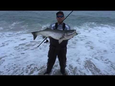 NJ Striped Bass Fall Run – Nov 2015