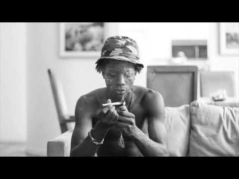 Joey Bada$$ - Reign