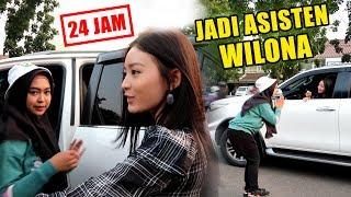 Video JADI ASISTEN WILONA SELAMA 24 JAM... Hehehe MP3, 3GP, MP4, WEBM, AVI, FLV Juli 2019