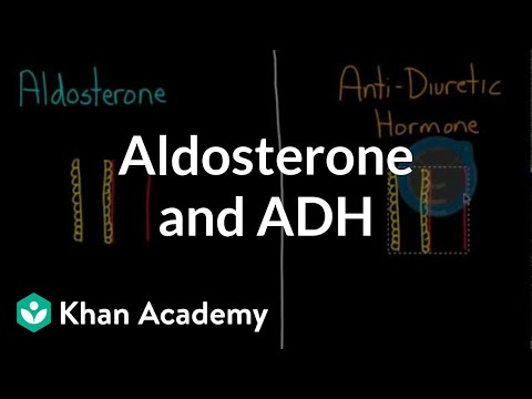 Aldosterone and ADH | Renal system physiology | NCLEX-RN | Khan Academy