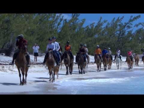 Half Moon Cay, Bahamas - Horseback Riding