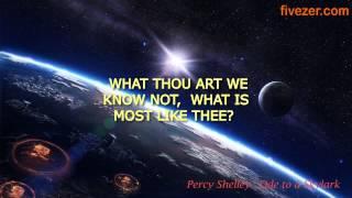 Ode To A Skylark : Shelly - Facevidz