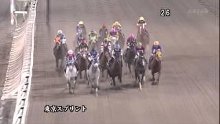 2013年東京スプリント