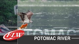 2015 FLW TV   Potomac River