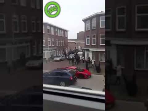 العرب اليوم - شاهد: شجار بين عائلة العريس والعروس في هولندا
