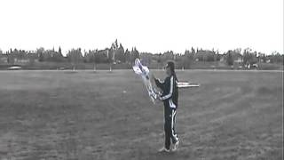 Rc Plane | Hobby King Yak | Rc Model Airplanes
