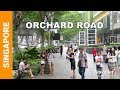 Singapore Attractions - Orchard Road waing tour - Singapore shopping street - Top things to do